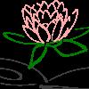 Lotus 303462