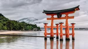 Shiatsu,  Mémoire Cellulaire et Résonances Familiales Soins Energétiques