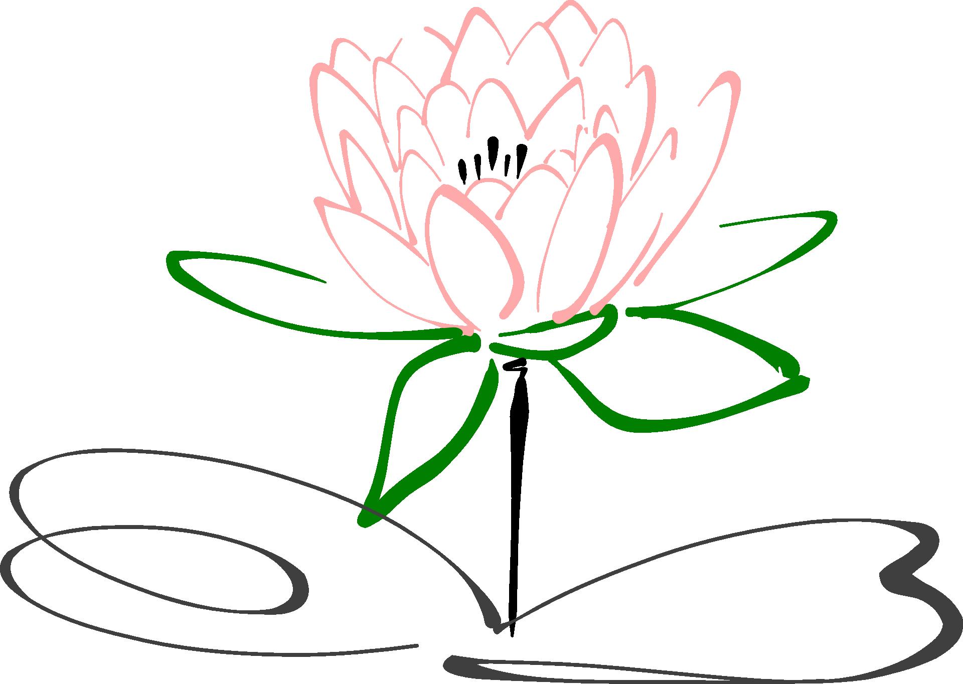 Lotus 303463